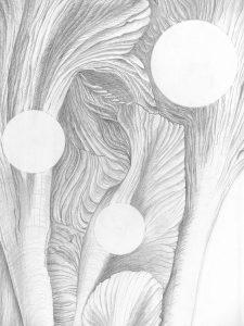 The Beginning (2015) graphite/paper, 65x50 cm (detail)